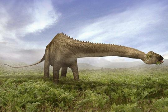 Dinosaurios Vegetarianos I8 La Guarida Del Pensamiento Los dinosaurios carnívoros tenían dientes puntiagudos y cortantes como una sierra. dinosaurios vegetarianos i8 la
